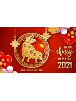График работы на Китайский Новый год 2021